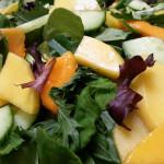 Mango and papaya salad with mizuna lettuce, cucumbers, wonton chips in orange-chili vinaigrette. Accompanied a Hawaiian menu.