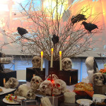 Crows keeping guard over the dead.... and delicious food!